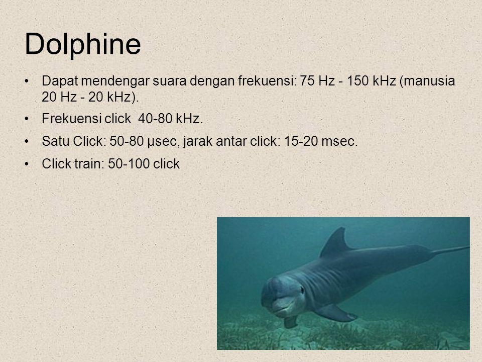 Dolphine Dapat mendengar suara dengan frekuensi: 75 Hz - 150 kHz (manusia 20 Hz - 20 kHz). Frekuensi click 40-80 kHz. Satu Click: 50-80 µsec, jarak an