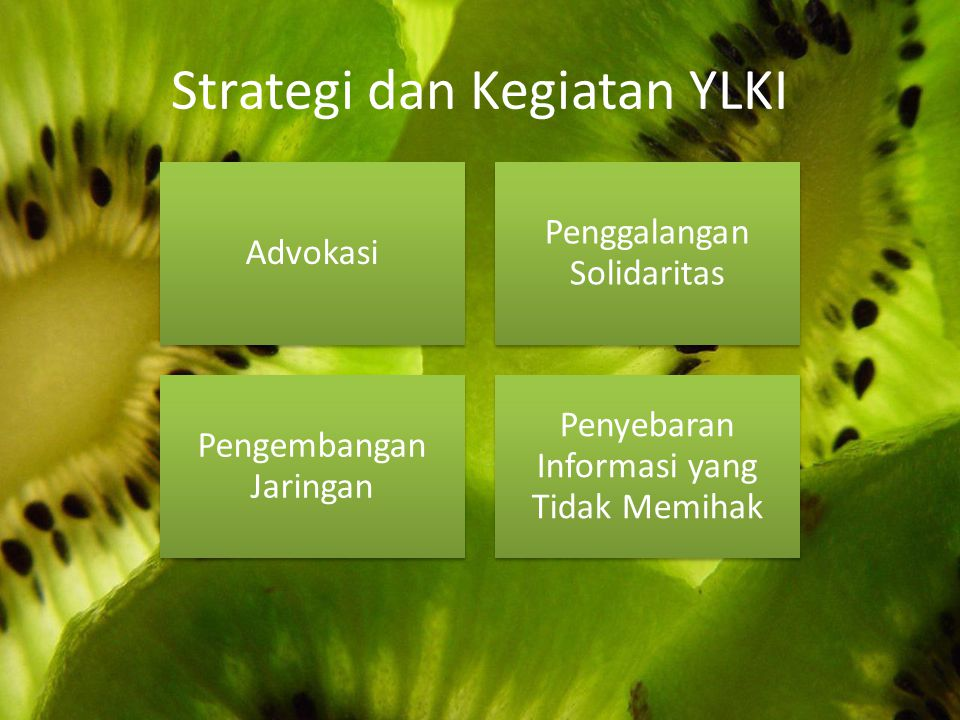 Strategi dan Kegiatan YLKI Advokasi Penggalangan Solidaritas Pengembangan Jaringan Penyebaran Informasi yang Tidak Memihak