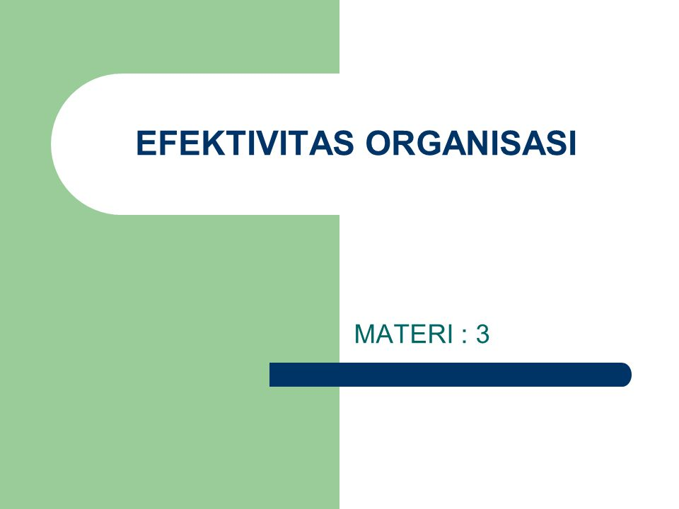 EFEKTIVITAS ORGANISASI MATERI : 3
