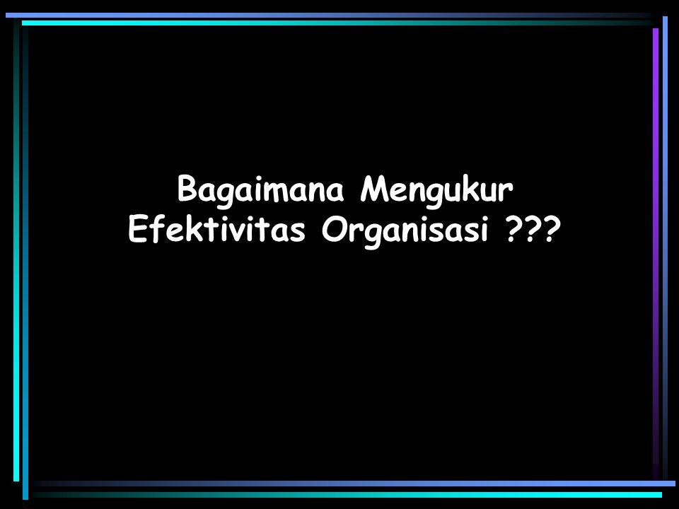 Bagaimana Mengukur Efektivitas Organisasi ???