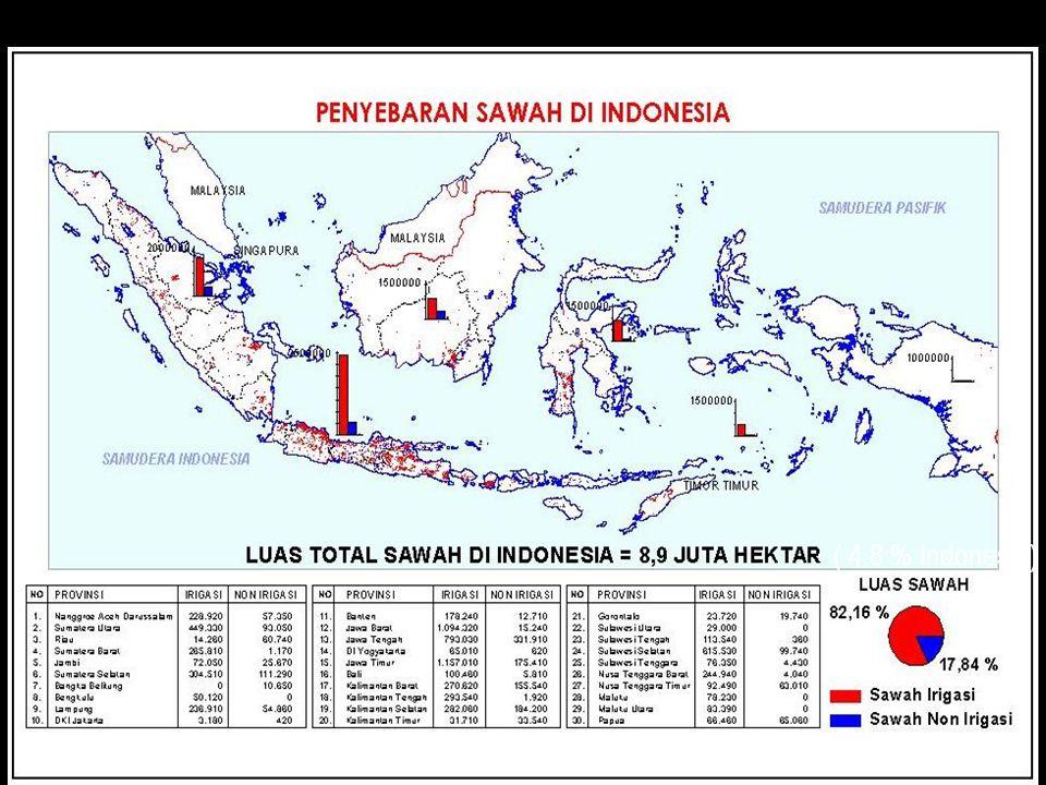 nuhfil hanani24 ( 4.8 % Indonesia)