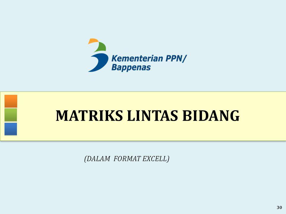 MATRIKS LINTAS BIDANG 30 (DALAM FORMAT EXCELL)