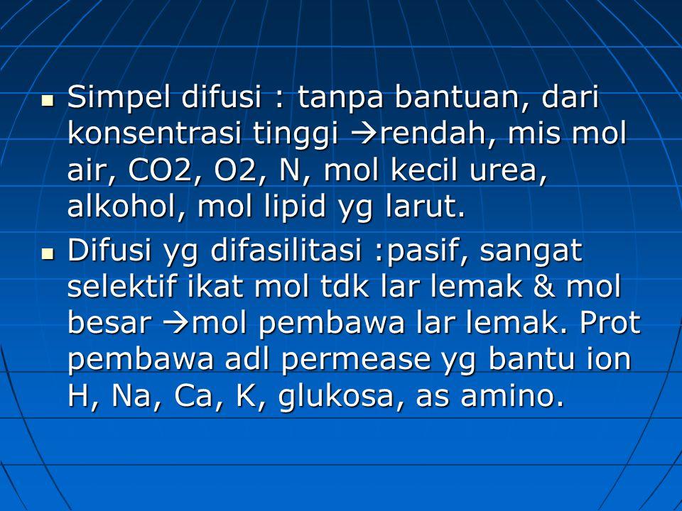 Simpel difusi : tanpa bantuan, dari konsentrasi tinggi  rendah, mis mol air, CO2, O2, N, mol kecil urea, alkohol, mol lipid yg larut.