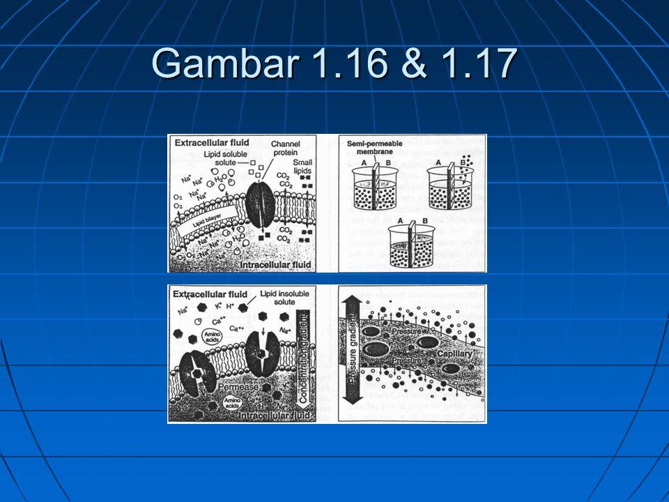 Gambar 1.16 & 1.17