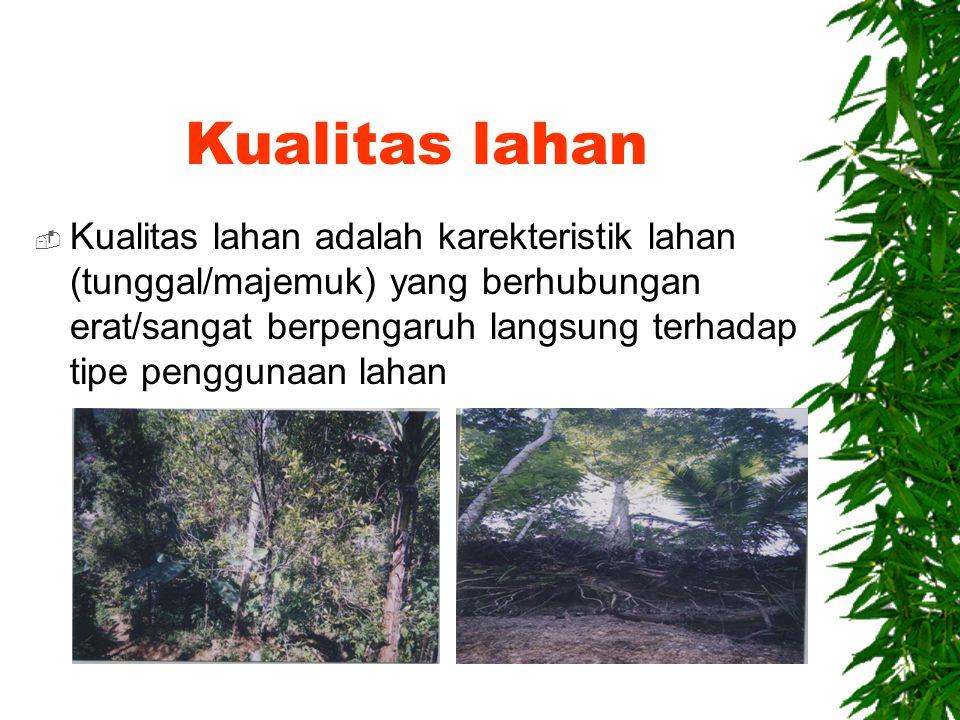 Karakteristik perkebunan  Lereng 15 – 30%  Kedalaman solum tanah sedang-dalam  Permukaan air tanah sedang  Kesuburan tanah sedang- tinggi  Bahaya erosi sedang  Iklim sedang-basah