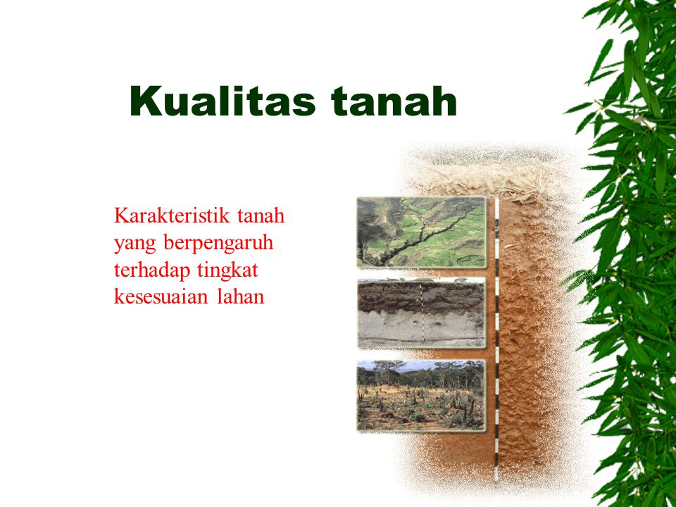 Kualitas lahan Dataran banjir