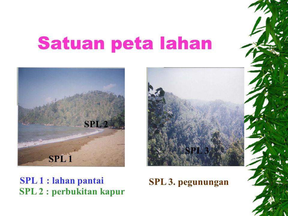 Pengertian satuan peta lahan (SPL)  SPL : kelompok lahan yang mempunyai karakteristik sama lahan SPL 1SPL 2SPL 3
