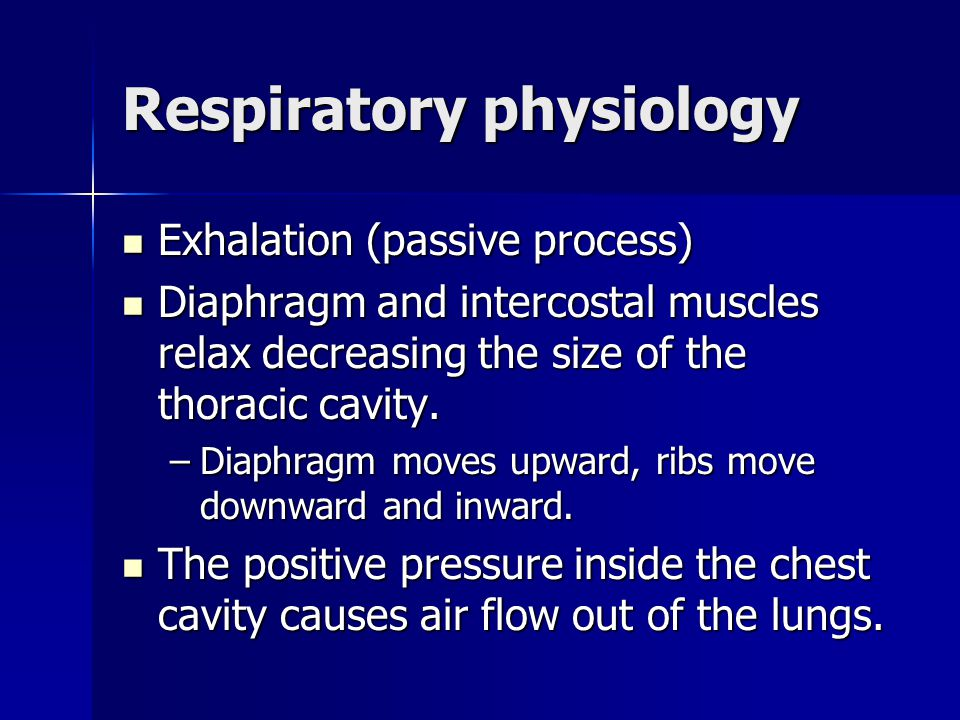 Respiratory physiology Exhalation (passive process) Exhalation (passive process) Diaphragm and intercostal muscles relax decreasing the size of the th