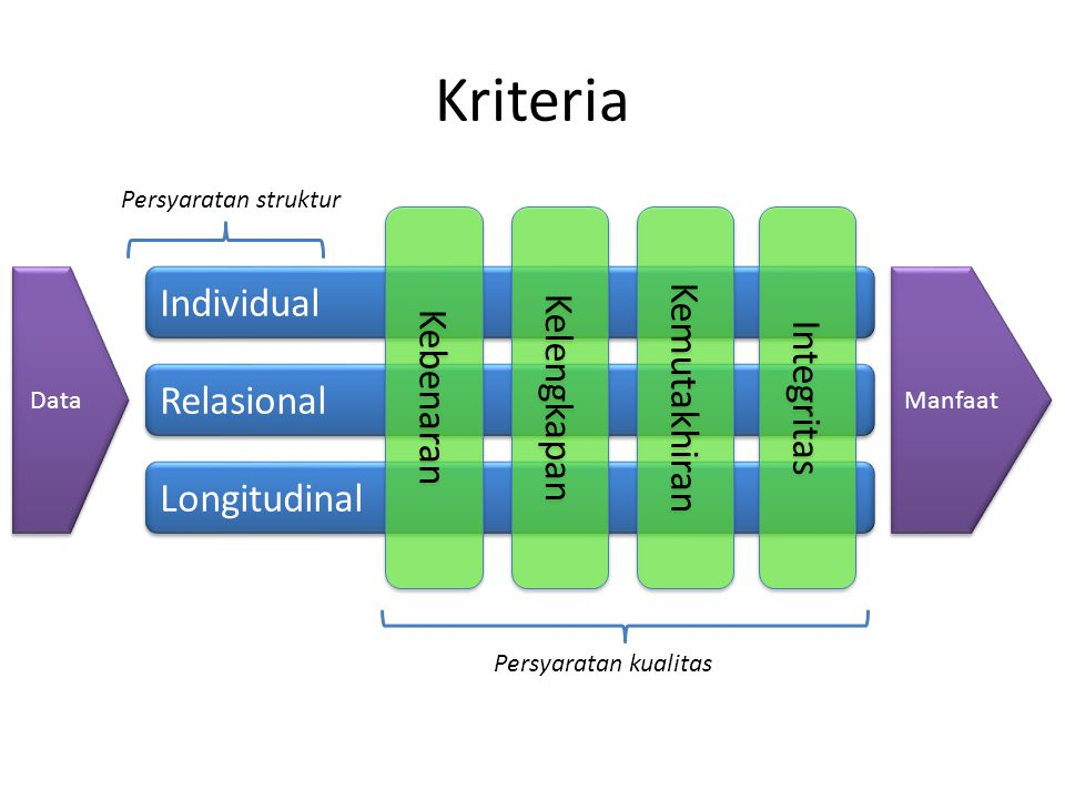 Kriteria Individual Relasional Longitudinal Kebenaran Kelengkapan Kemutakhiran Persyaratan kualitas Integritas Data Manfaat Persyaratan struktur