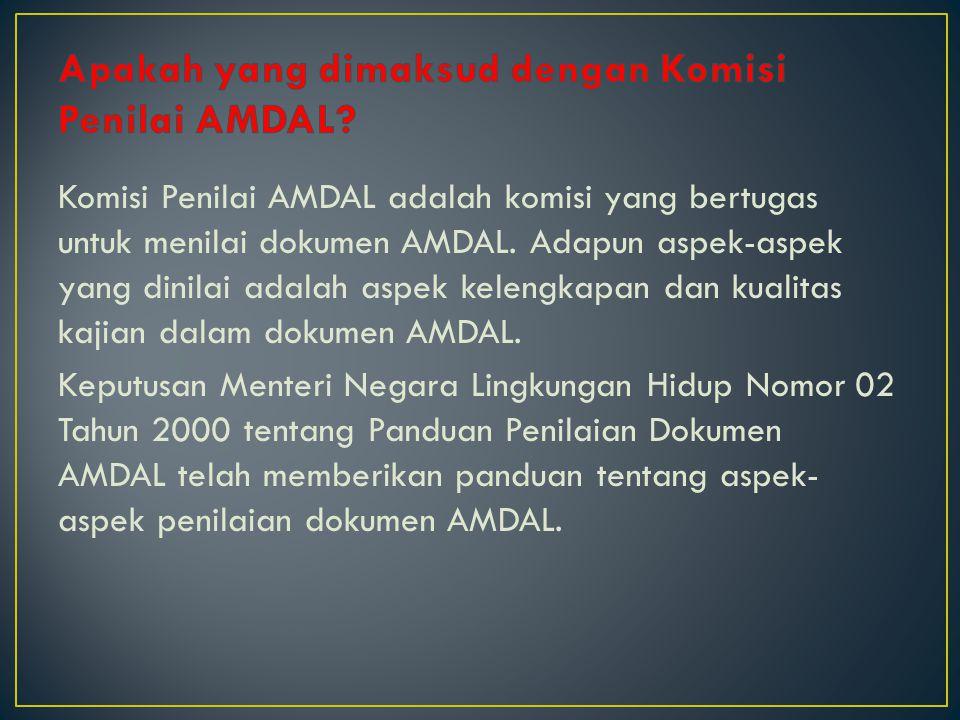 Komisi Penilai AMDAL adalah komisi yang bertugas untuk menilai dokumen AMDAL. Adapun aspek-aspek yang dinilai adalah aspek kelengkapan dan kualitas ka