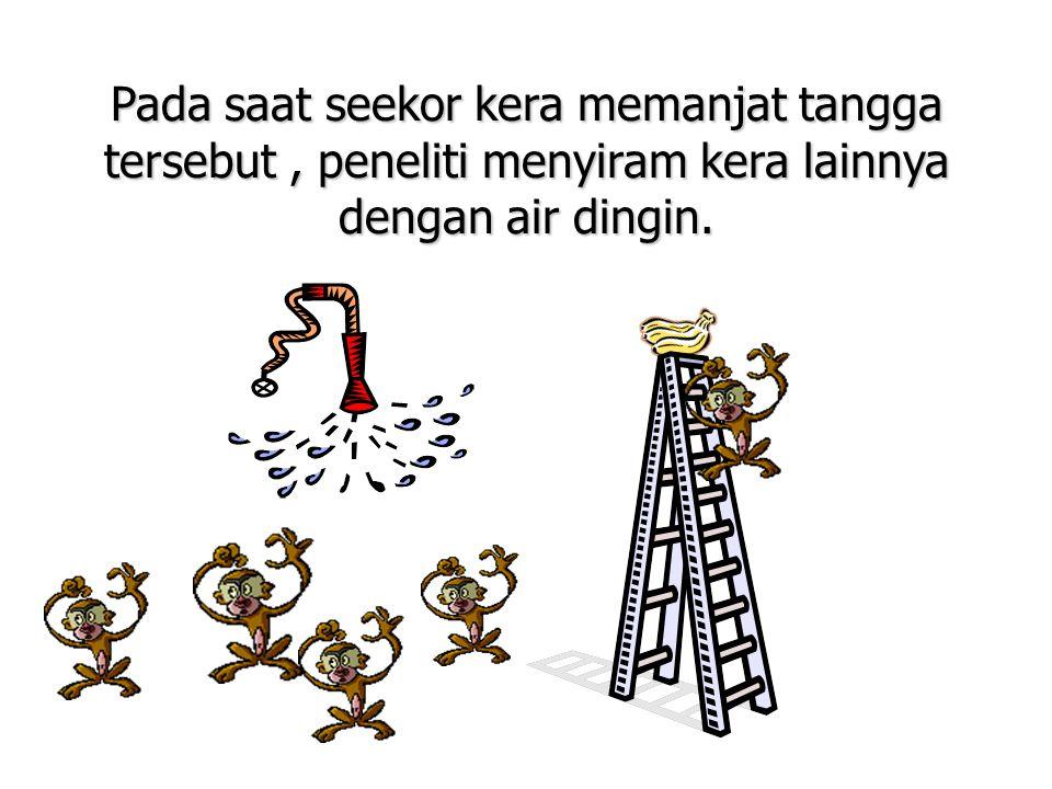 Setelah itu, setiap ada kera yang hendak memanjat tangga, kera lainnya menariknya menjauhi tangga.