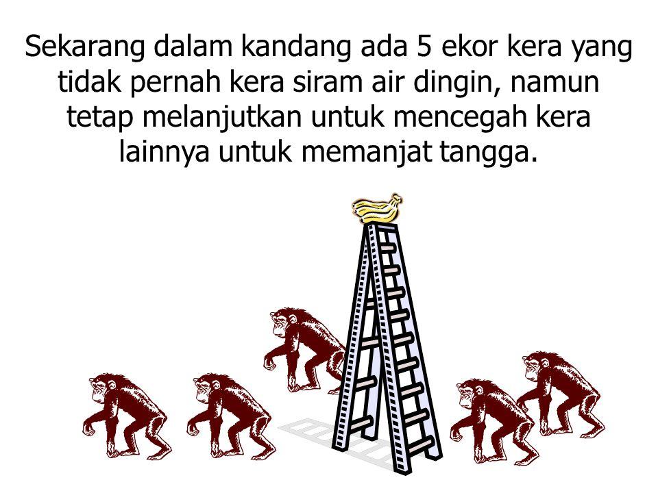 Jika memungkinkan kita bertanya pada kera – kera tersebut mengapa mereka saling cegah siapapun yang hendak memanjat tangga....