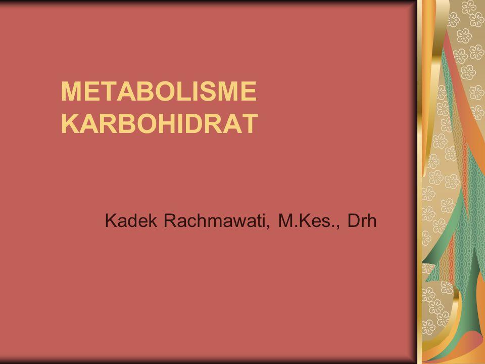 METABOLISME KARBOHIDRAT Kadek Rachmawati, M.Kes., Drh