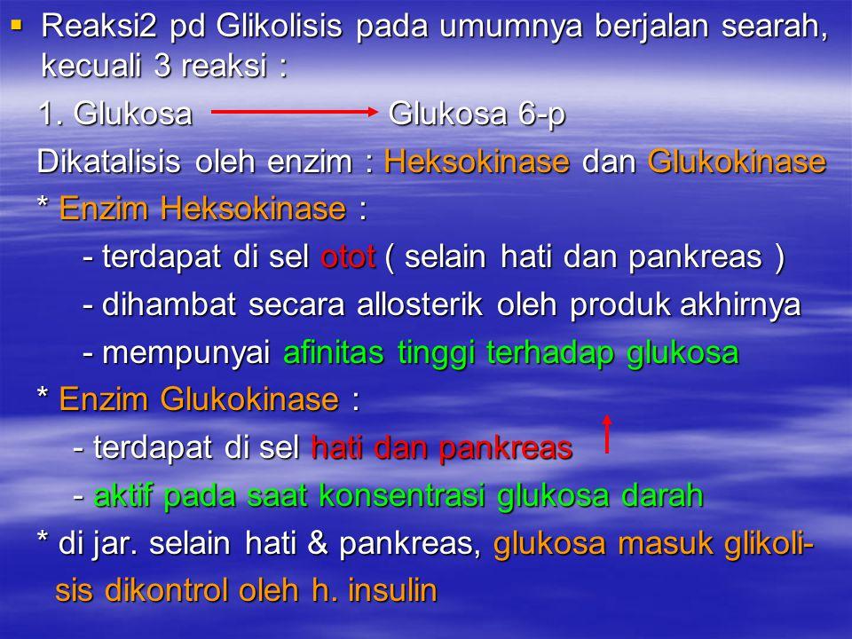  Reaksi2 pd Glikolisis pada umumnya berjalan searah, kecuali 3 reaksi : 1. Glukosa Glukosa 6-p 1. Glukosa Glukosa 6-p Dikatalisis oleh enzim : Heksok