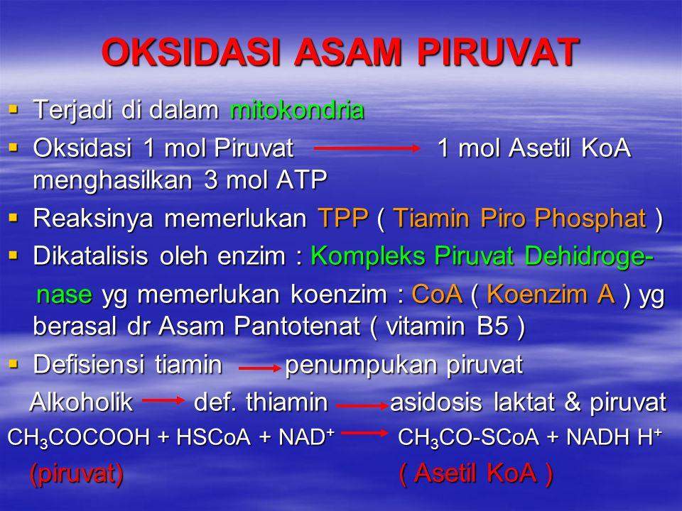 OKSIDASI ASAM PIRUVAT  Terjadi di dalam mitokondria  Oksidasi 1 mol Piruvat 1 mol Asetil KoA menghasilkan 3 mol ATP  Reaksinya memerlukan TPP ( Tia