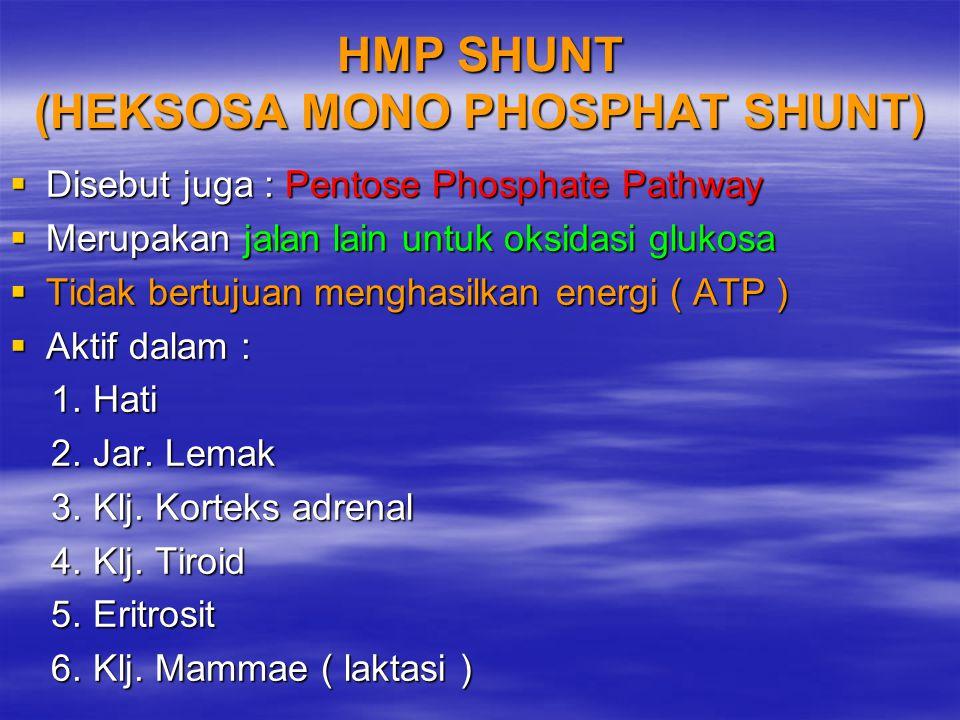 HMP SHUNT (HEKSOSA MONO PHOSPHAT SHUNT)  Disebut juga : Pentose Phosphate Pathway  Merupakan jalan lain untuk oksidasi glukosa  Tidak bertujuan men