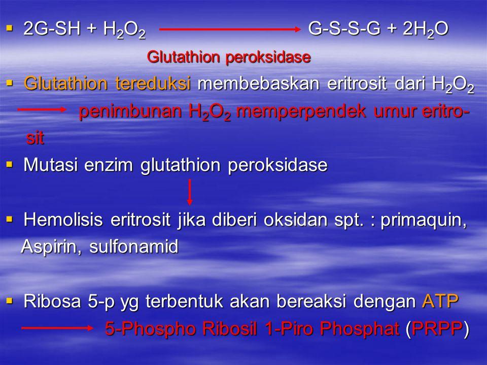 2G-SH + H 2 O 2 G-S-S-G + 2H 2 O Glutathion peroksidase Glutathion peroksidase  Glutathion tereduksi membebaskan eritrosit dari H 2 O 2 penimbunan