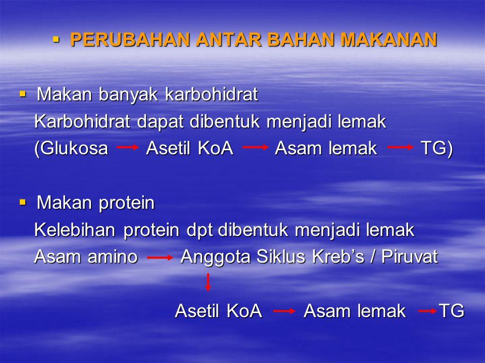  PERUBAHAN ANTAR BAHAN MAKANAN  Makan banyak karbohidrat Karbohidrat dapat dibentuk menjadi lemak Karbohidrat dapat dibentuk menjadi lemak (Glukosa