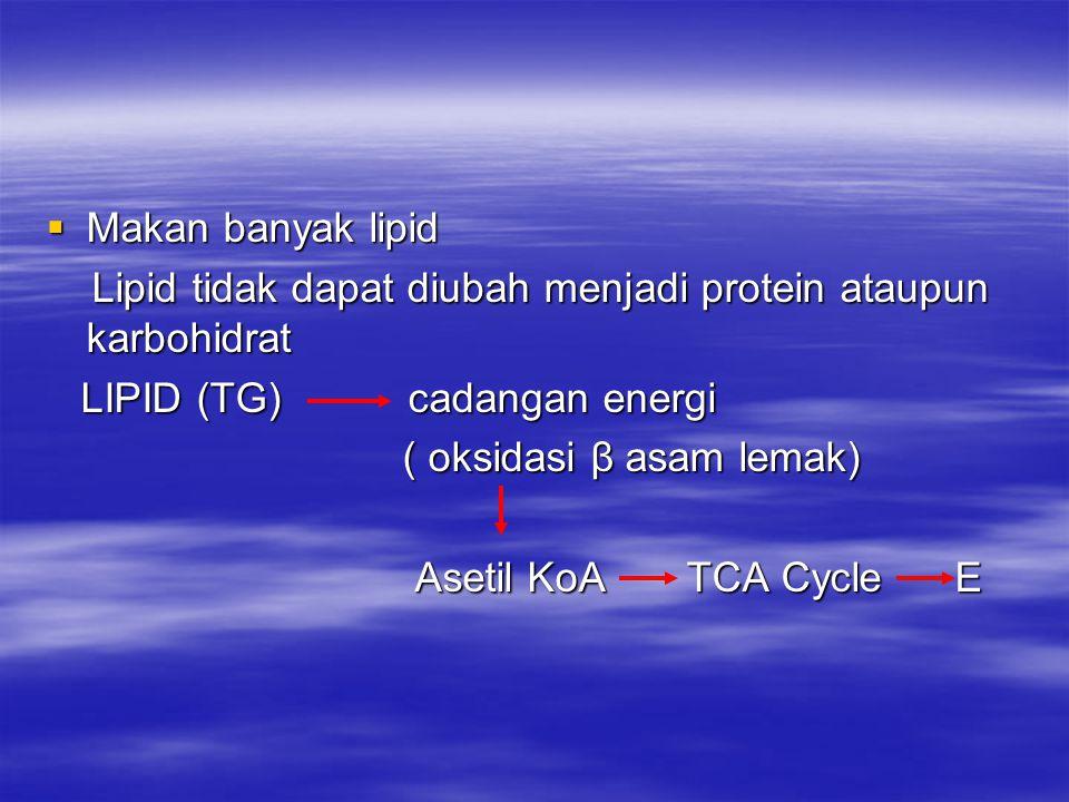  Makan banyak lipid Lipid tidak dapat diubah menjadi protein ataupun karbohidrat Lipid tidak dapat diubah menjadi protein ataupun karbohidrat LIPID (