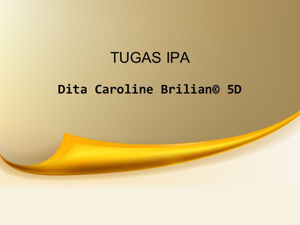 TUGAS IPA Dita Caroline Brilian© 5D