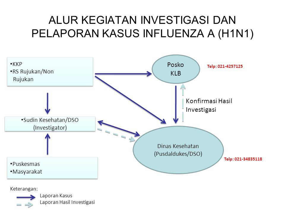 ALUR KEGIATAN INVESTIGASI DAN PELAPORAN KASUS INFLUENZA A (H1N1) KKP RS Rujukan/Non Rujukan KKP RS Rujukan/Non Rujukan Sudin Kesehatan/DSO (Investigat