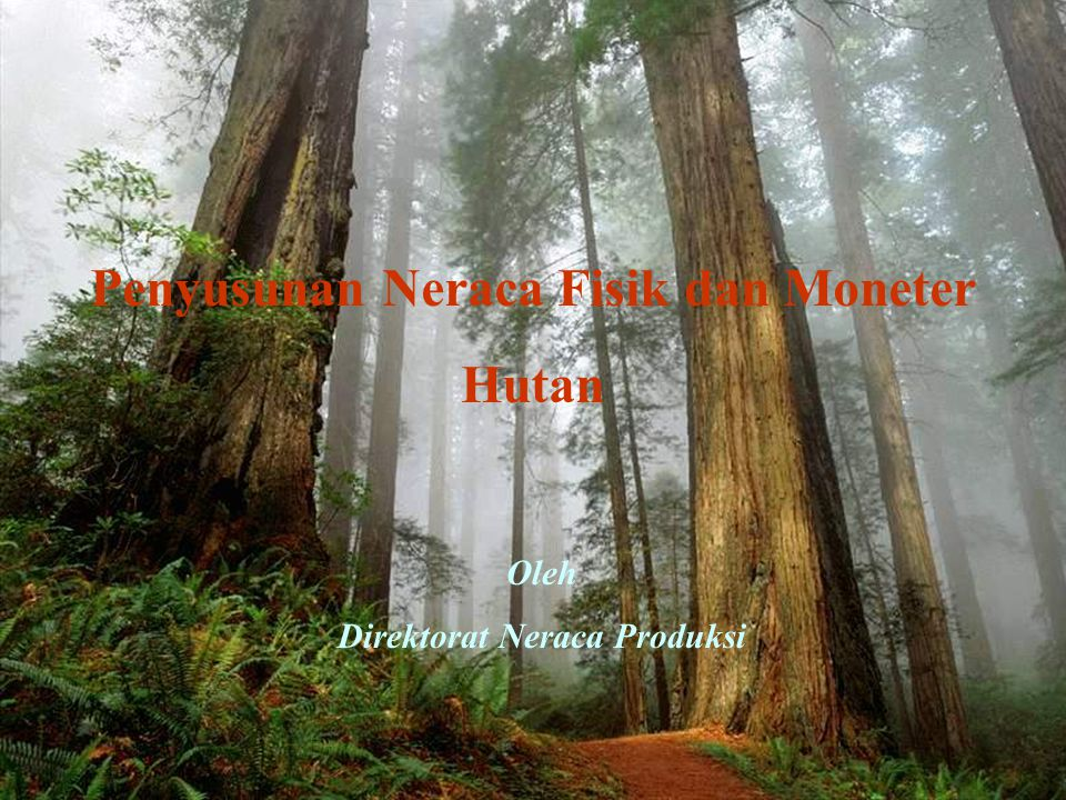 Penyusunan Neraca Fisik dan Moneter Hutan Oleh Direktorat Neraca Produksi