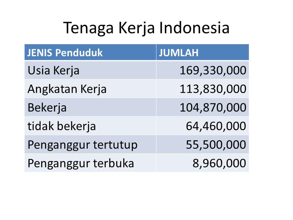 Tenaga Kerja Indonesia JENIS PendudukJUMLAH Usia Kerja169,330,000 Angkatan Kerja113,830,000 Bekerja104,870,000 tidak bekerja64,460,000 Penganggur tert