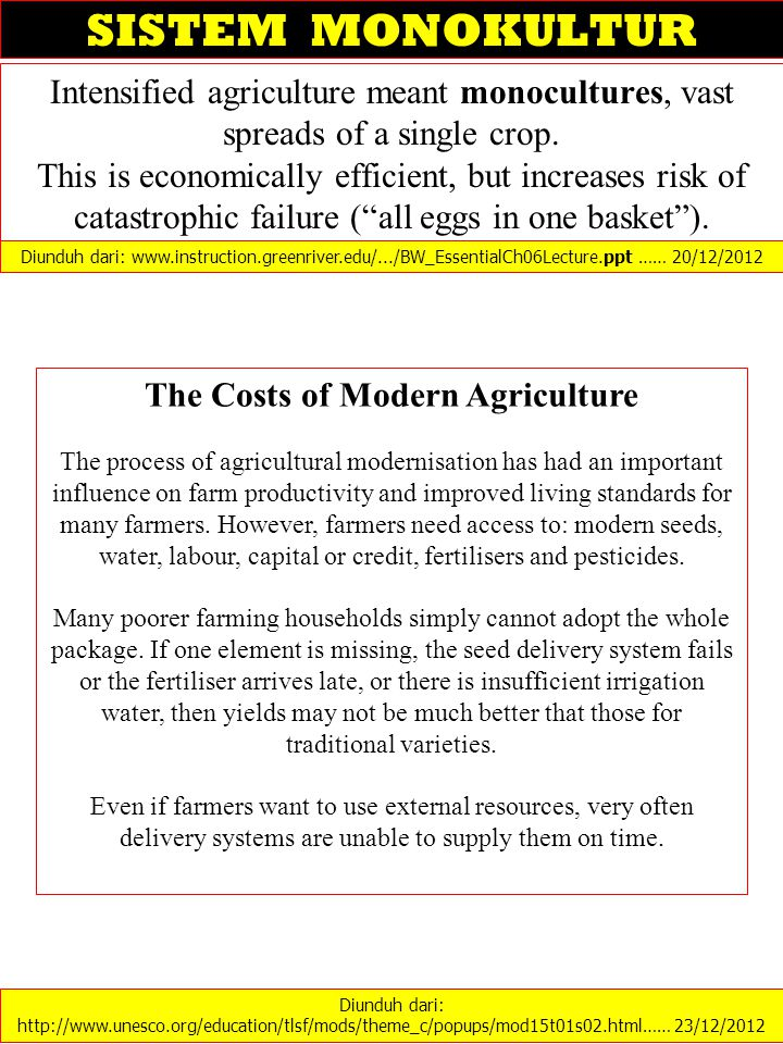 Intensified agriculture meant monocultures, vast spreads of a single crop. This is economically efficient, but increases risk of catastrophic failure