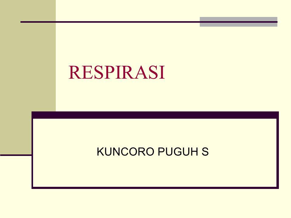RESPIRASI KUNCORO PUGUH S