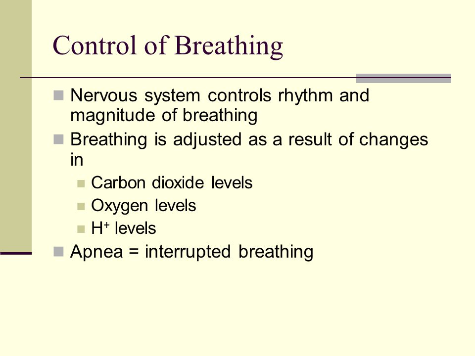 Control of Breathing Nervous system controls rhythm and magnitude of breathing Breathing is adjusted as a result of changes in Carbon dioxide levels O