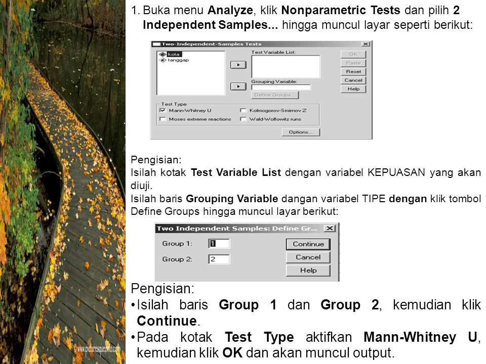 1.Buka menu Analyze, klik Nonparametric Tests dan pilih 2 Independent Samples...
