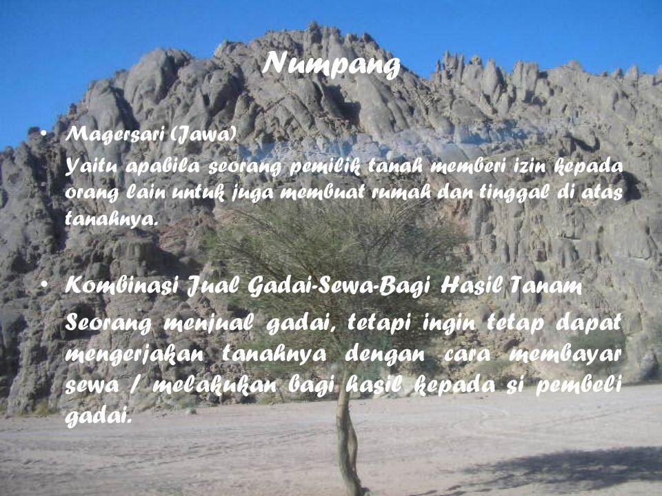 Numpang Magersari (Jawa) Yaitu apabila seorang pemilik tanah memberi izin kepada orang lain untuk juga membuat rumah dan tinggal di atas tanahnya. Kom
