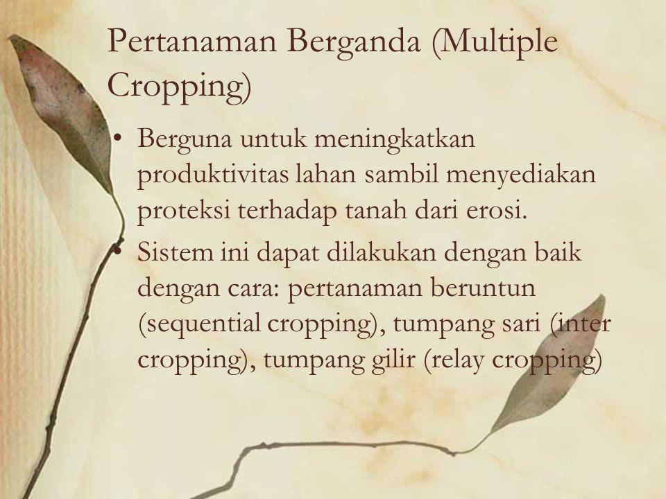 Pertanaman Berganda (Multiple Cropping) Berguna untuk meningkatkan produktivitas lahan sambil menyediakan proteksi terhadap tanah dari erosi. Sistem i