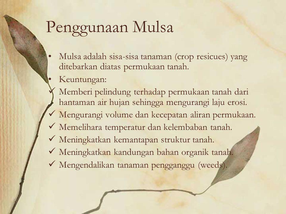Penggunaan Mulsa Mulsa adalah sisa-sisa tanaman (crop resicues) yang ditebarkan diatas permukaan tanah. Keuntungan: Memberi pelindung terhadap permuka