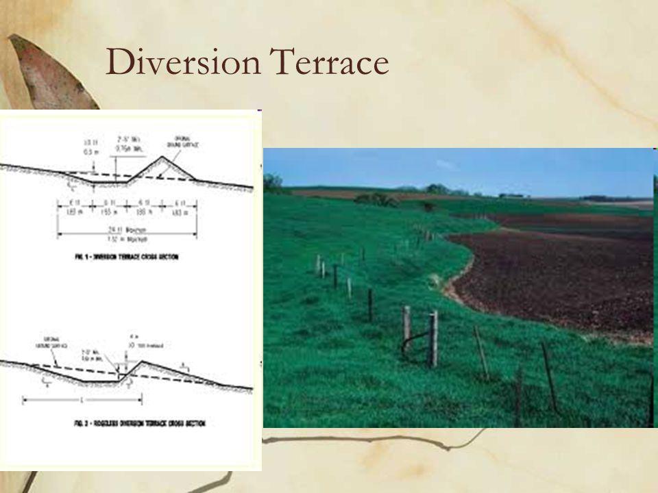 Diversion Terrace