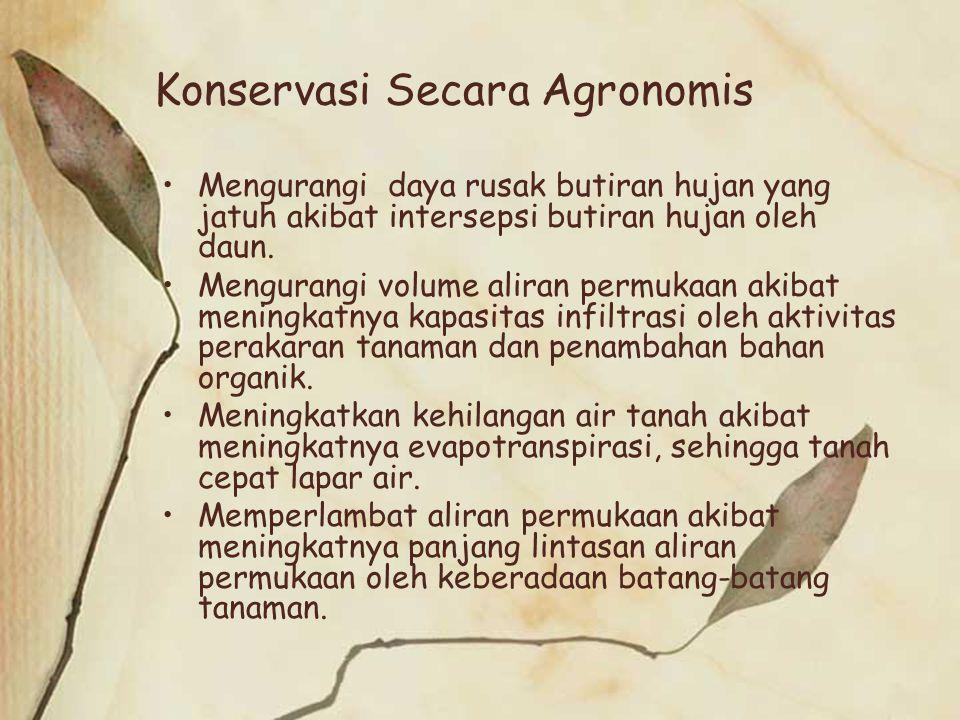 Konservasi Secara Agronomis Mengurangi daya rusak butiran hujan yang jatuh akibat intersepsi butiran hujan oleh daun. Mengurangi volume aliran permuka