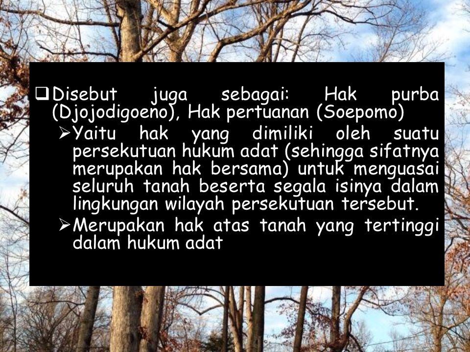  Disebut juga sebagai: Hak purba (Djojodigoeno), Hak pertuanan (Soepomo)  Yaitu hak yang dimiliki oleh suatu persekutuan hukum adat (sehingga sifatn