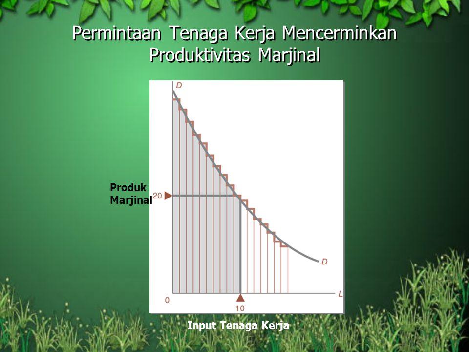 Permintaan Tenaga Kerja Mencerminkan Produktivitas Marjinal Input Tenaga Kerja Produk Marjinal