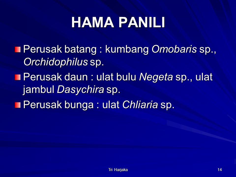Tri Harjaka 14 HAMA PANILI Perusak batang : kumbang Omobaris sp., Orchidophilus sp. Perusak daun : ulat bulu Negeta sp., ulat jambul Dasychira sp. Per