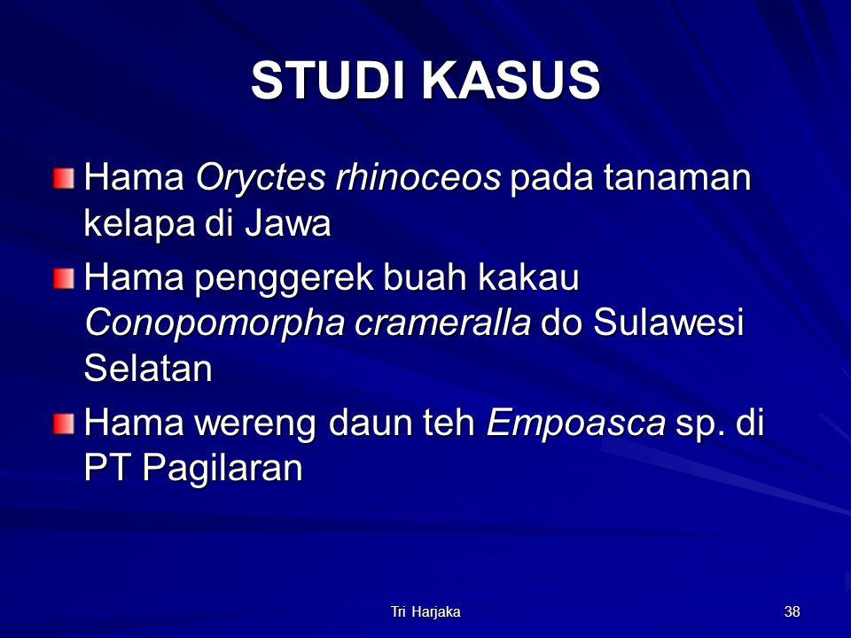 Tri Harjaka 38 STUDI KASUS Hama Oryctes rhinoceos pada tanaman kelapa di Jawa Hama penggerek buah kakau Conopomorpha crameralla do Sulawesi Selatan Ha