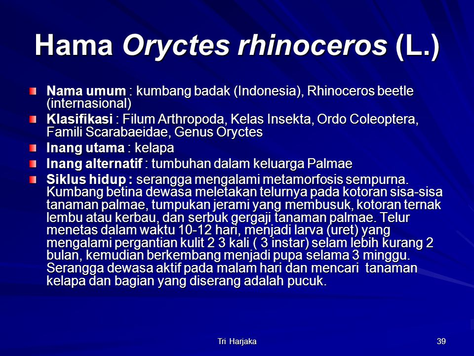Tri Harjaka 39 Hama Oryctes rhinoceros (L.) Nama umum : kumbang badak (Indonesia), Rhinoceros beetle (internasional) Klasifikasi : Filum Arthropoda, K