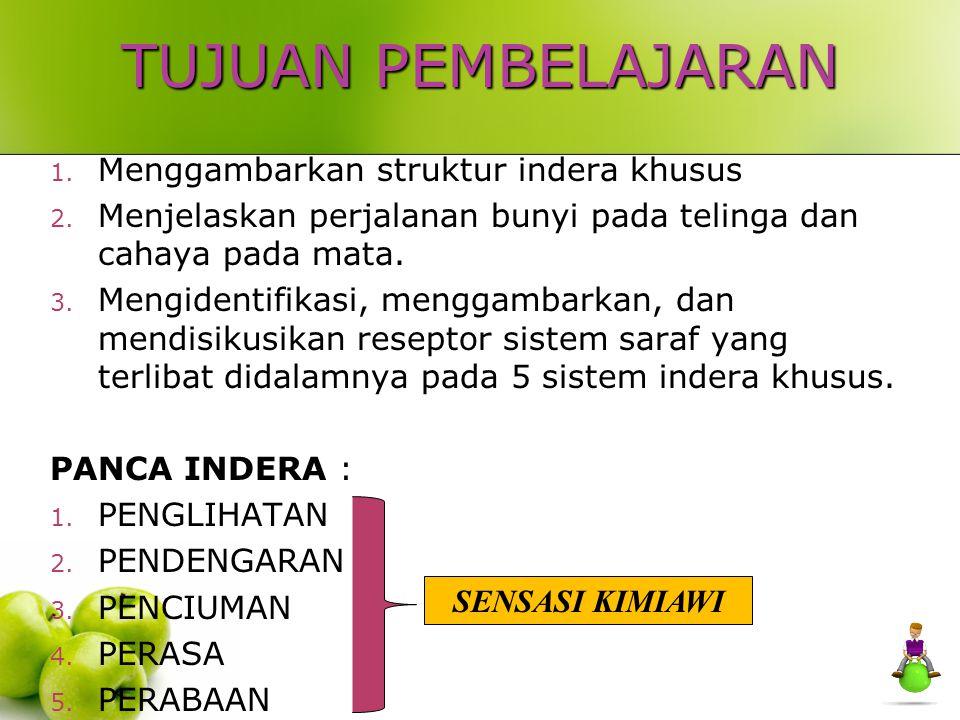 4. INDRA PENCIUMAN SMELL SENSES
