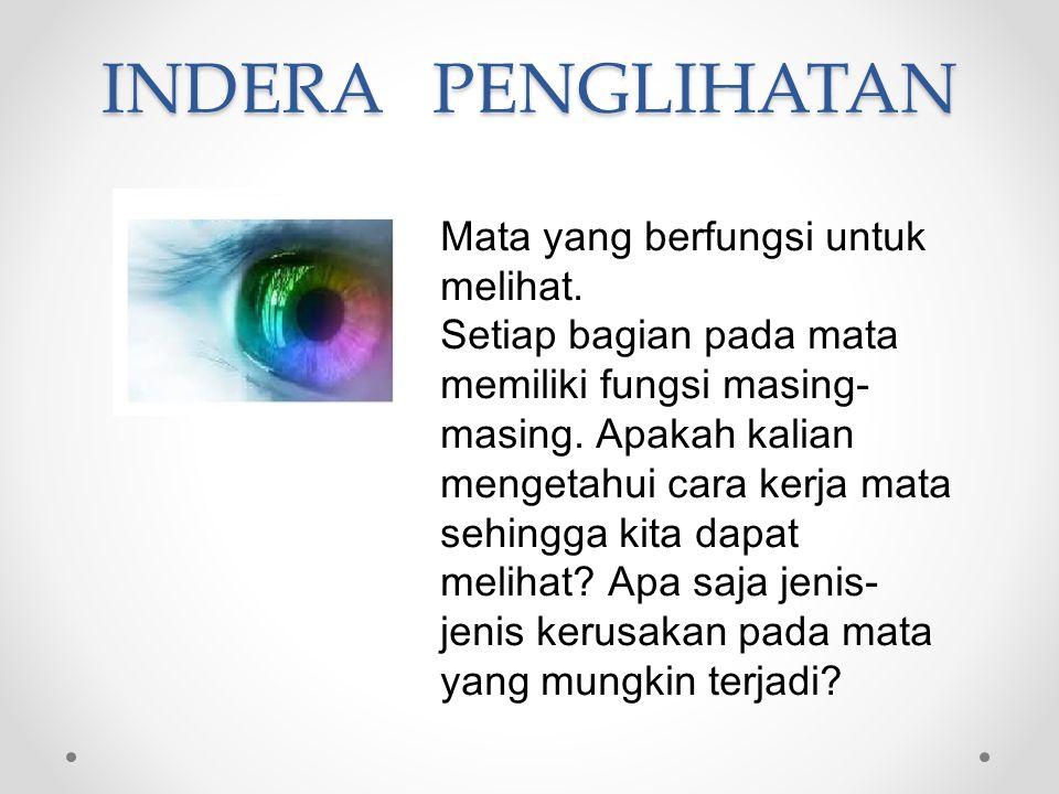 INDERA PENGLIHATAN Mata yang berfungsi untuk melihat. Setiap bagian pada mata memiliki fungsi masing- masing. Apakah kalian mengetahui cara kerja mata