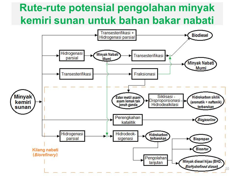 Rute-rute potensial pengolahan minyak kemiri sunan untuk bahan bakar nabati 10