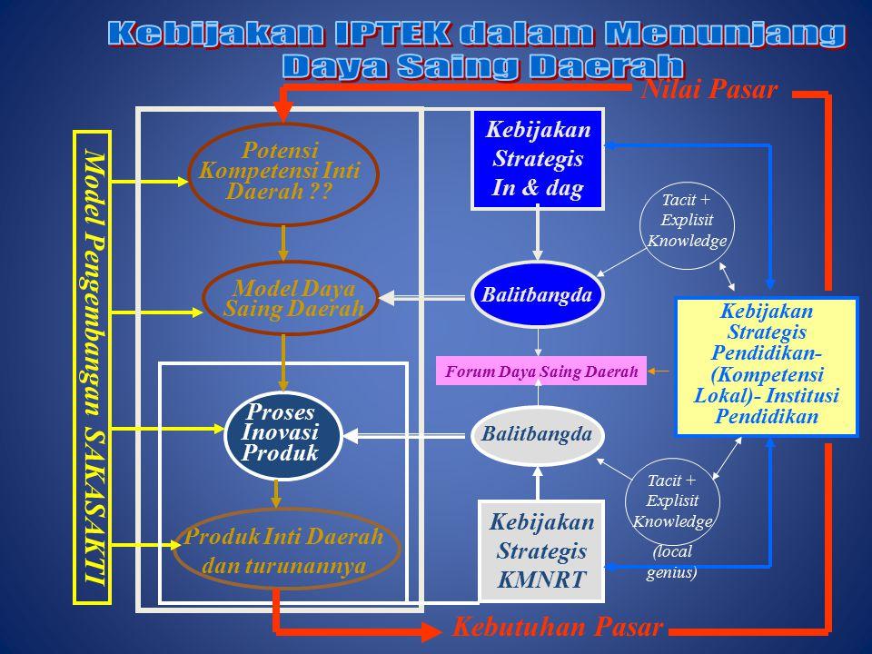Potensi Kompetensi Inti Daerah ?.
