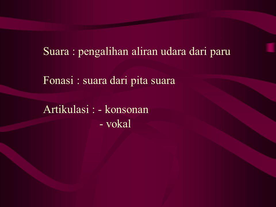 Suara : pengalihan aliran udara dari paru Fonasi : suara dari pita suara Artikulasi : - konsonan - vokal