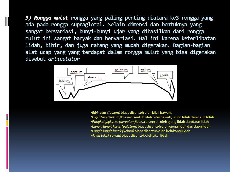 a. Komponen Supraglotal 1) Rongga kerongkongan yang terletak di atas laring ini merupakan tabung dan di bagian atasnya bercabang dua, yang berwujud ro
