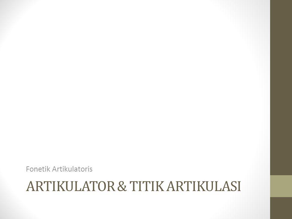 ARTIKULATOR & TITIK ARTIKULASI Fonetik Artikulatoris