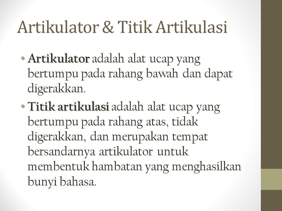 Artikulator & Titik Artikulasi Artikulator Artikulator adalah alat ucap yang bertumpu pada rahang bawah dan dapat digerakkan. Titik artikulasi Titik a