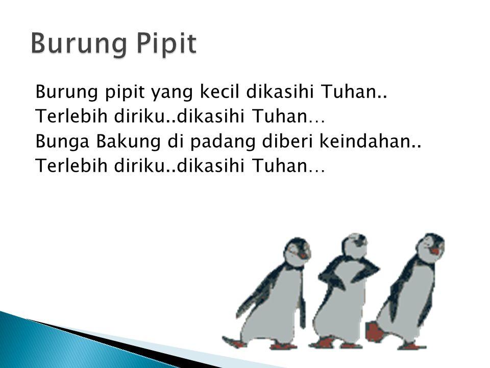 Burung pipit yang kecil dikasihi Tuhan..
